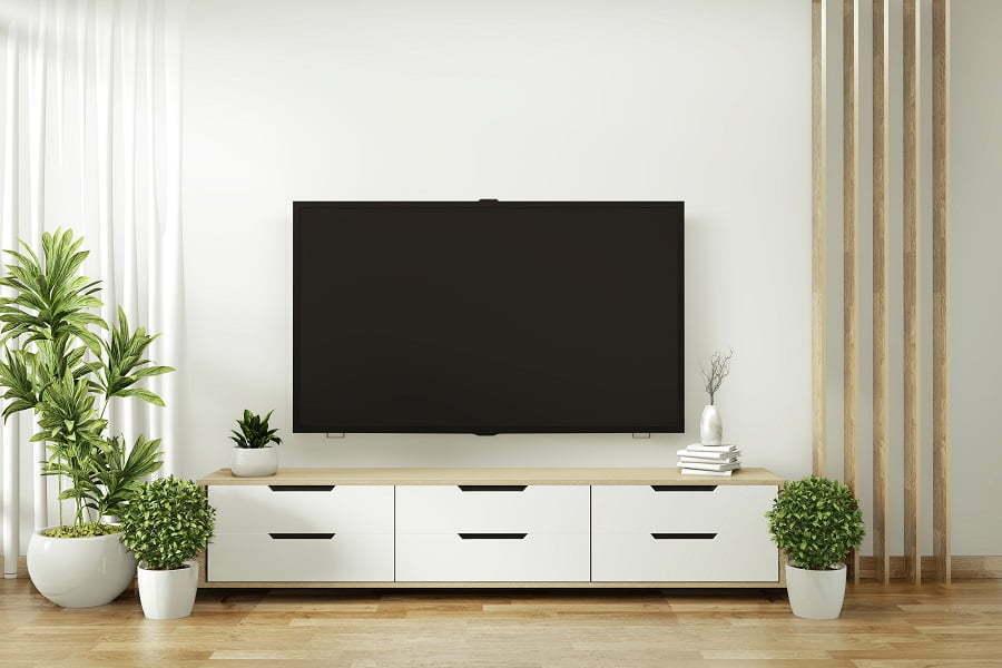 tv and houseplants