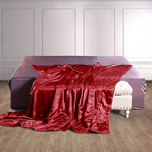Thxsilk 100% Silk Inside And Out Luxury Throw