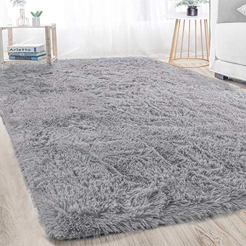 Soft Area Rug for the Livign Room
