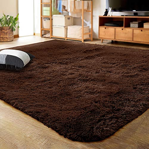 Luxury Area Rug for the Living Room
