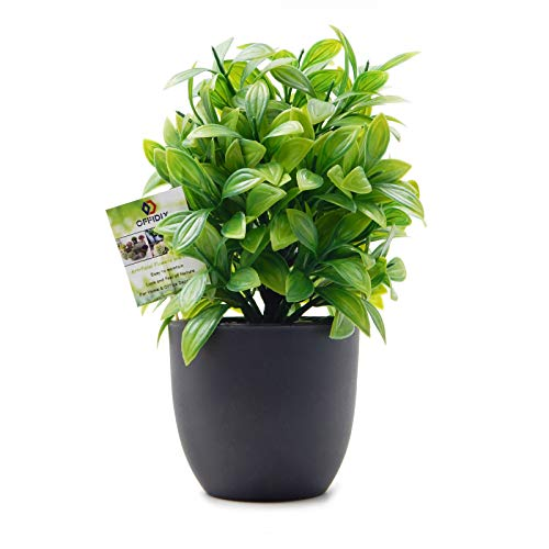 OFFIDIX Artificial Plant
