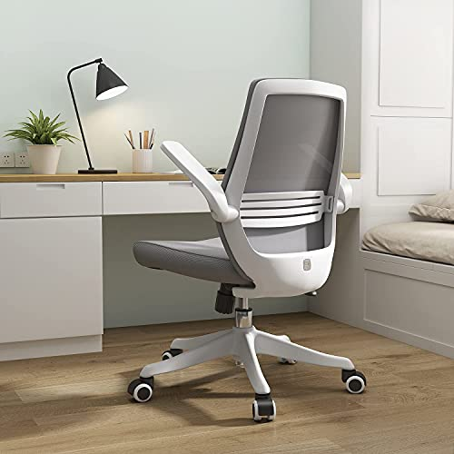 SIHOO Desk Chair For Long Hours