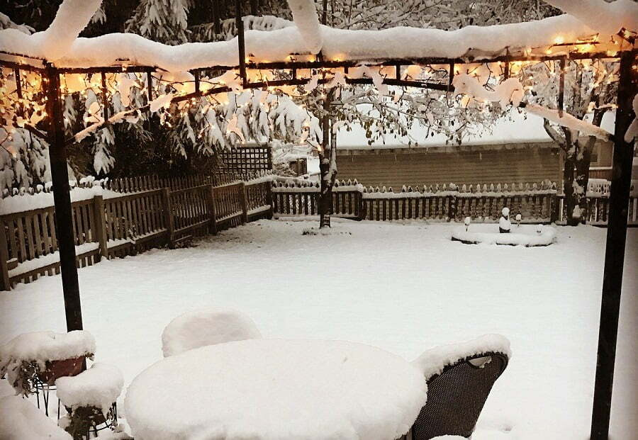 winter backyard lights